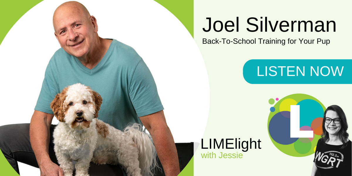 Joel Silverman Back to School Training for your pup